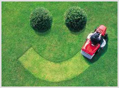 Alphabet Lawn Care Mobile Apps